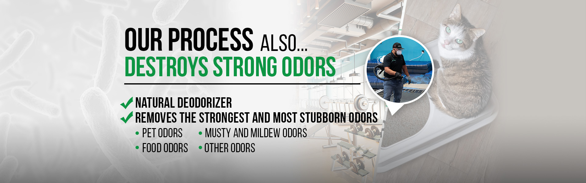Our 4 Step Process Destroys Strong Odors